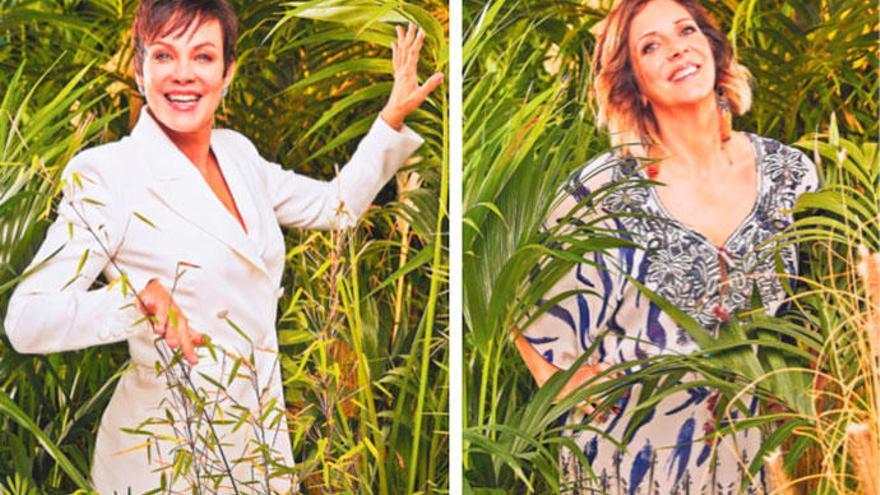 Darum ziehen Daniela Büchner und Sonja Kirchberger in den Dschungel