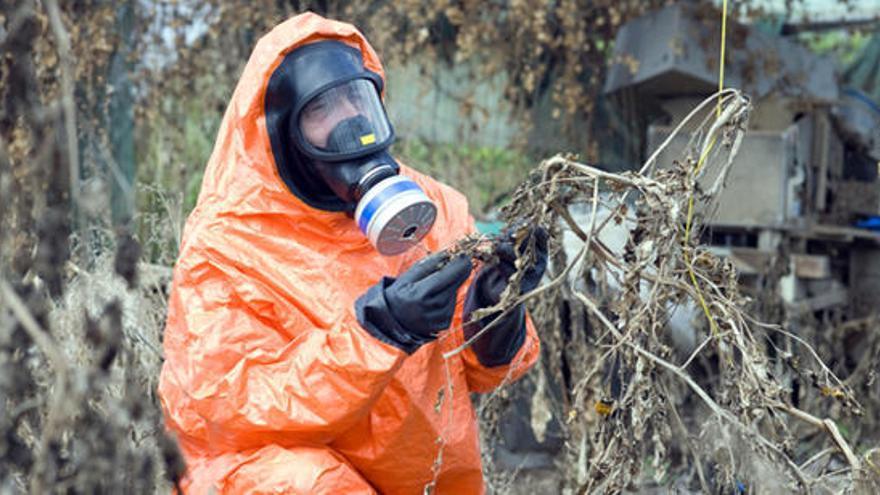 El peligro de las armas químicas