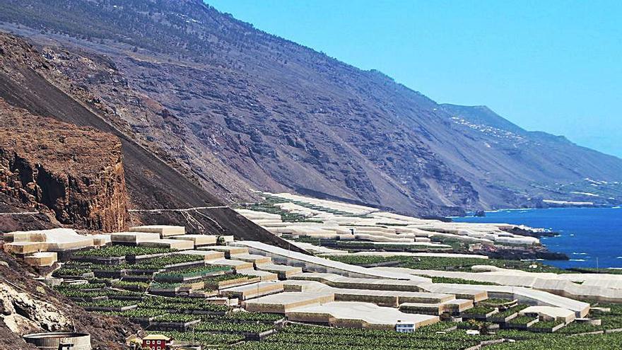 Puerto Naos permitirá 2.604 plazas turísticas y casas de cinco plantas