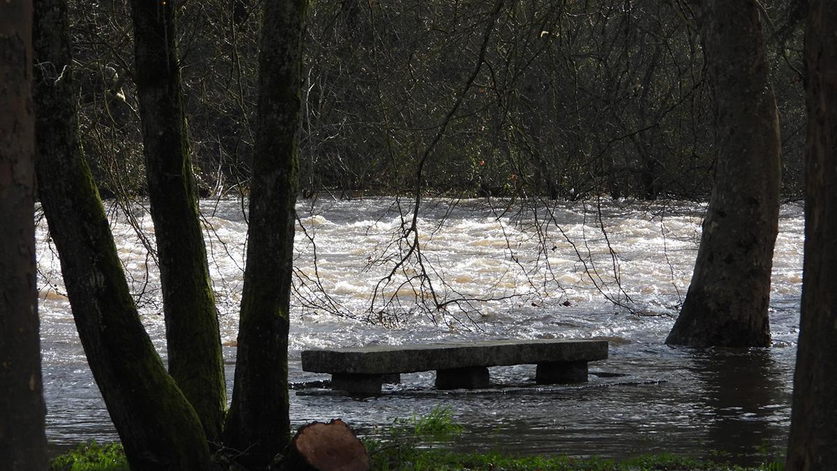 Una zona de Ribadavia, inundada por las lluvias de las últimas jornadas, antes de la llegada de la borrasca 'Karim'