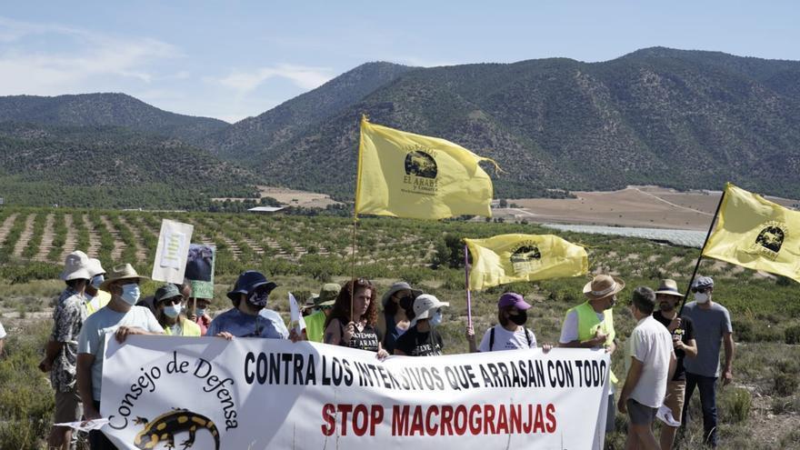Casi un centenar de personas protestan contra la agricultura intensiva en Archivel