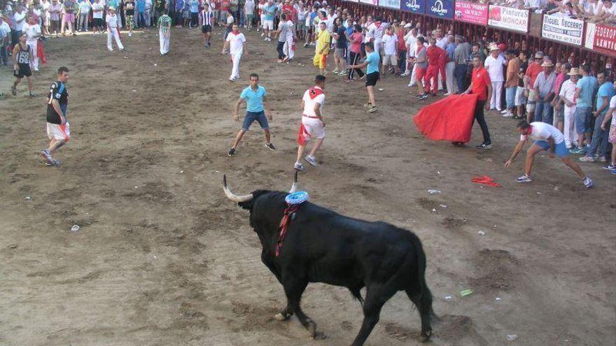 Coria se suma a la Plataforma para la Defensa de los Festejos de Tauromaquia Tradicional