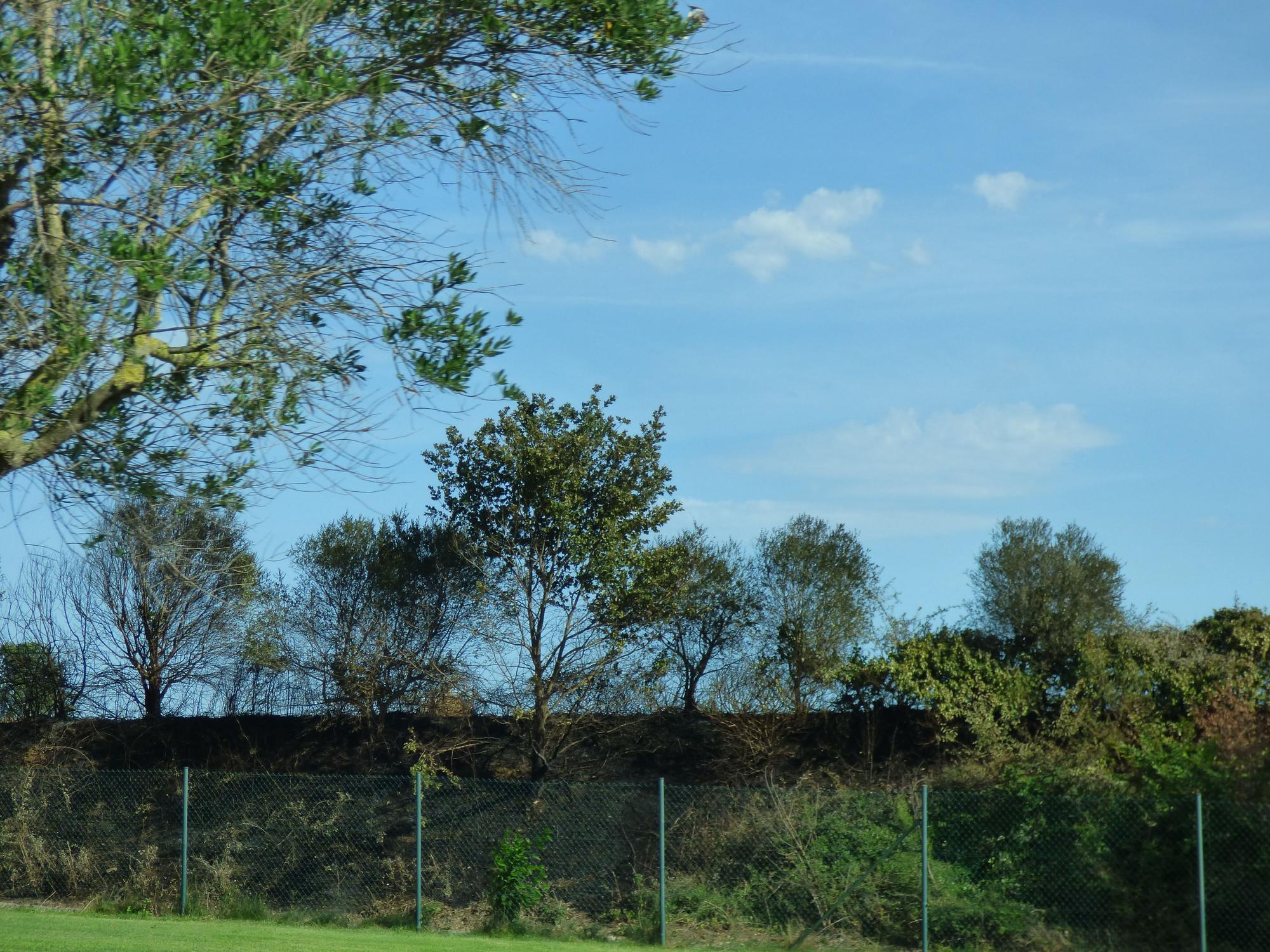 Un incendi ha calcinat 32 hectàrees de vegetació agrícola a Peralada