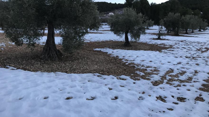 La nieve se mantiene en la sierra de Salinas a los diez días del paso de Filomena
