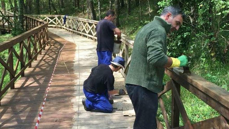 El Concello de A Laracha inicia los trabajos para acondicionar el paseo fluvial del río Anllóns