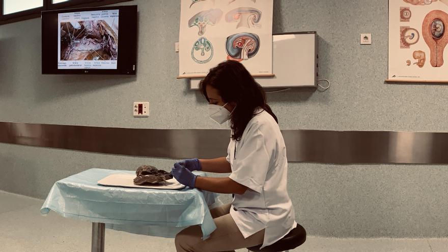 """Alba Coret: """"La donación del cuerpo es un acto de absoluta generosidad"""""""