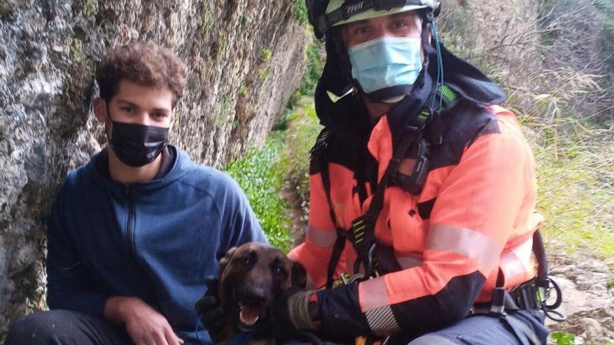 Bomberos rescatan a un perro que se había caído en el Tajo de Ronda