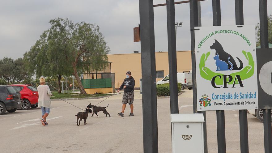 La gestión del centro de protección animal de Orihuela sigue sin licitarse dos meses después de caducar el contrato