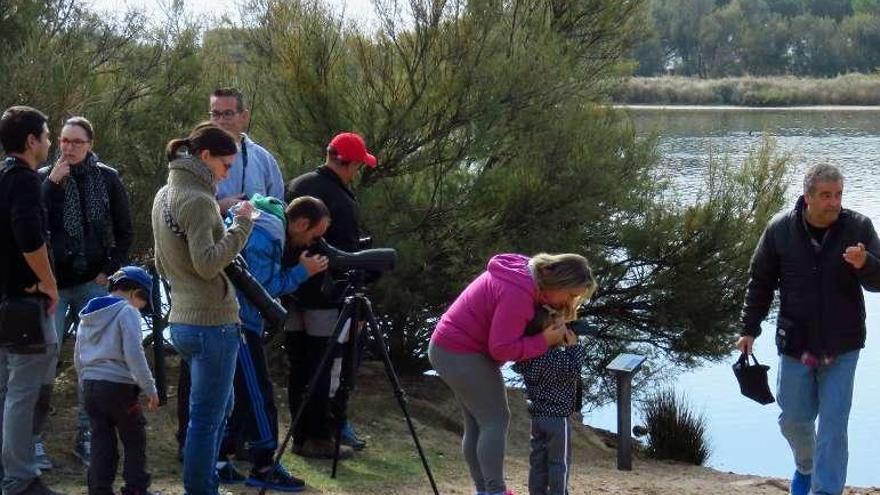 El número de visitas a las Lagunas de Villafáfila creció un 6,4% el año pasado