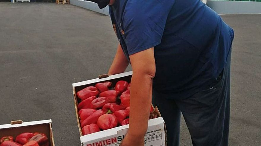 Los excedentes de frutas y verduras que se tiraban en el sur de Tenerife ahora se entregan a las ONG