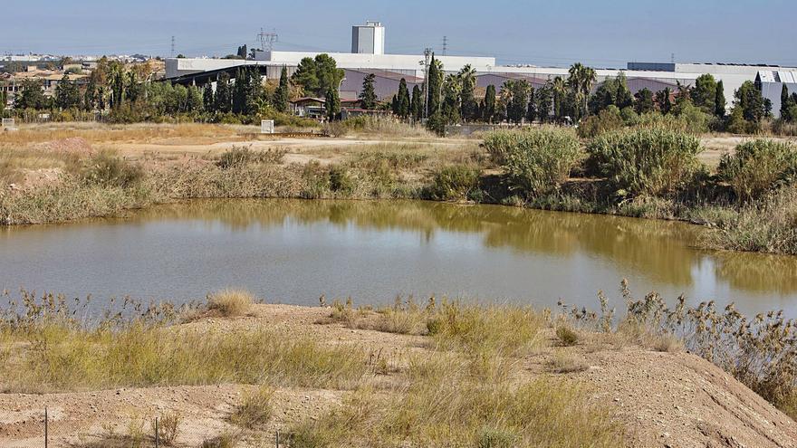 El viejo vertedero de Guadassuar se convertirá en una gran zona verde