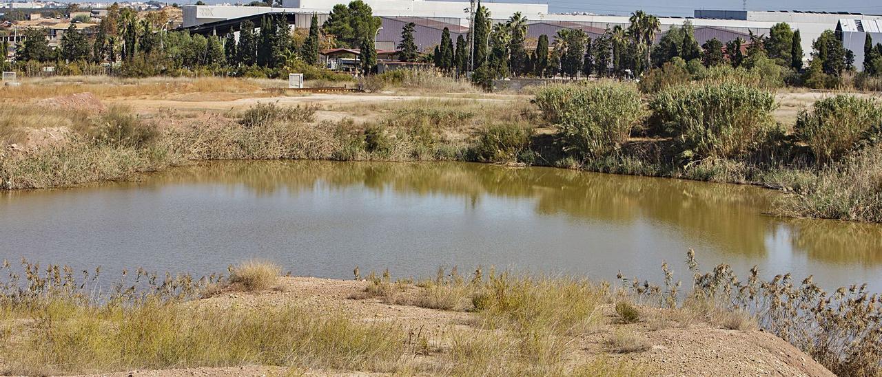 Una gran laguna se ha formado en el terreno ocupado por el antiguo vertedero de Guadassuar, ubicado junto a la planta actual.   PERALES IBORRA