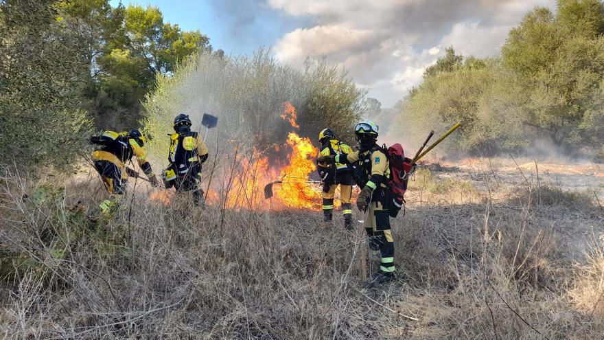 Un incendio forestal arrasa tres hectáreas junto a varias viviendas en Marratxí