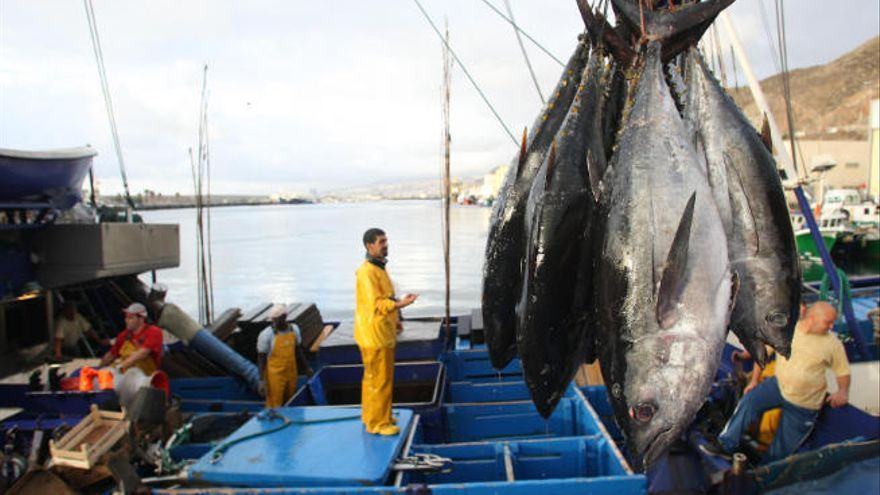 """Los pescadores ven """"abusivo y desproporcionado"""" el trato de la Policía Local en Tenerife"""