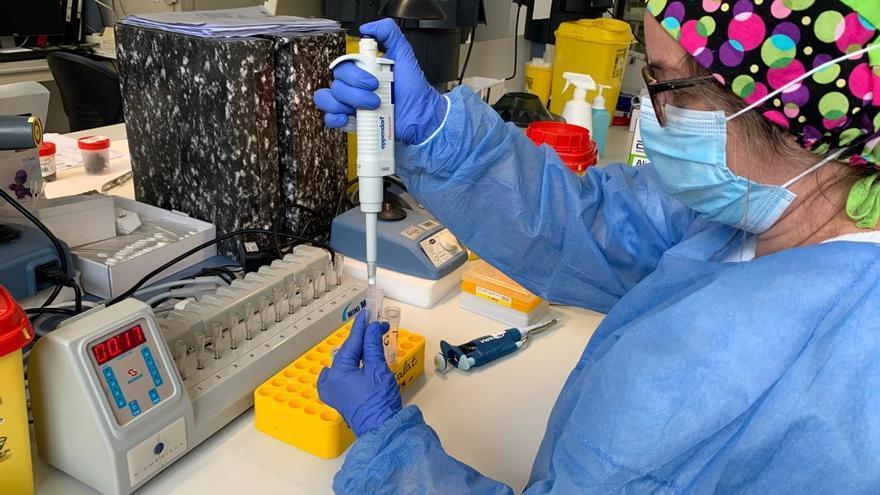 Los puntos covid-exprés aumentan a 6 en Palma y podrán hacer 900 PCR diarias