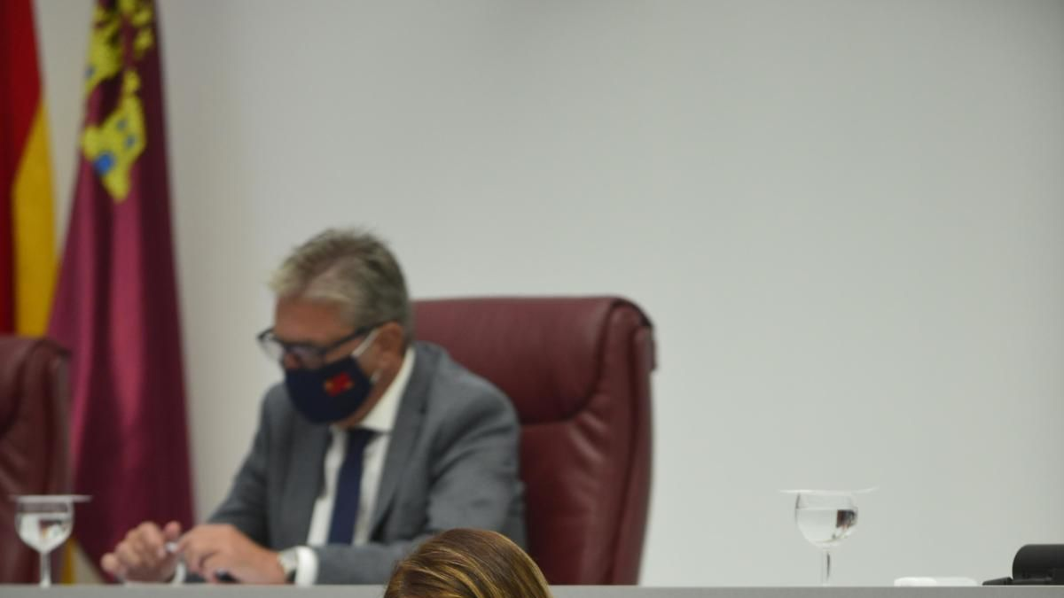 La consejera de Educación explica las medidas adoptadas por el Gobierno regional. iván urquízar