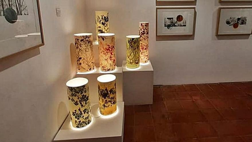 Exposició «El bosc translúcid. De la llum del bosc al paper» al Museu Molí Paperer de Capellades