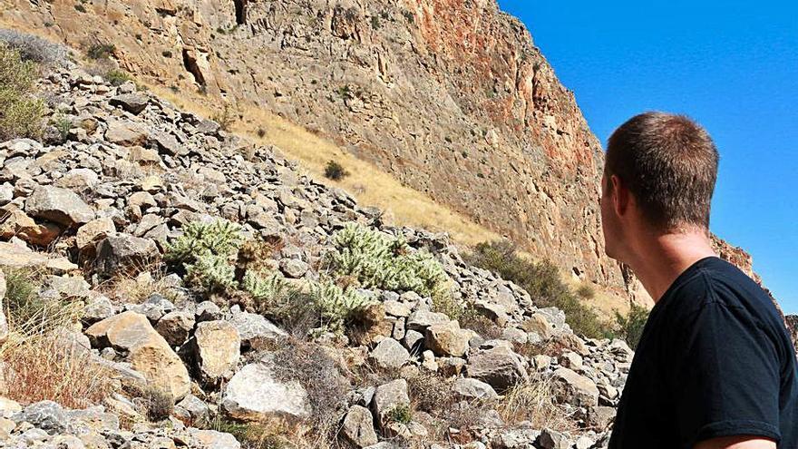 Voluntarios retirarán cactus de Arizona en Orihuela al dejar de hacerlo el Consell