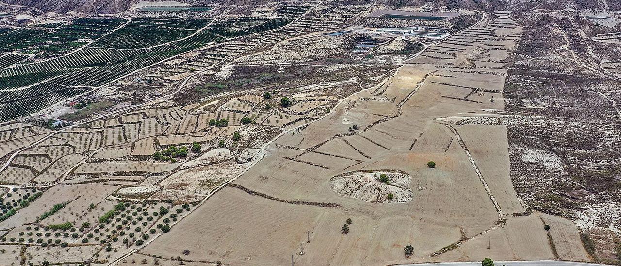 Solana de la sierra del Cristo donde se plantea una de las plantas sobre 127 hectáreas en suelo donde el Consell no lo permite. | TONY SEVILLA