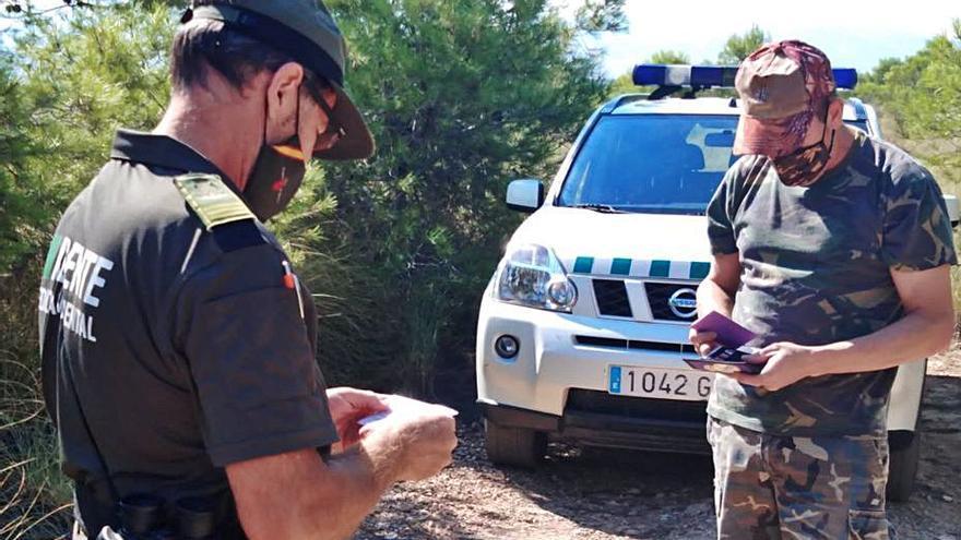 Parón cinegético para recuperar las poblaciones de tórtola europea