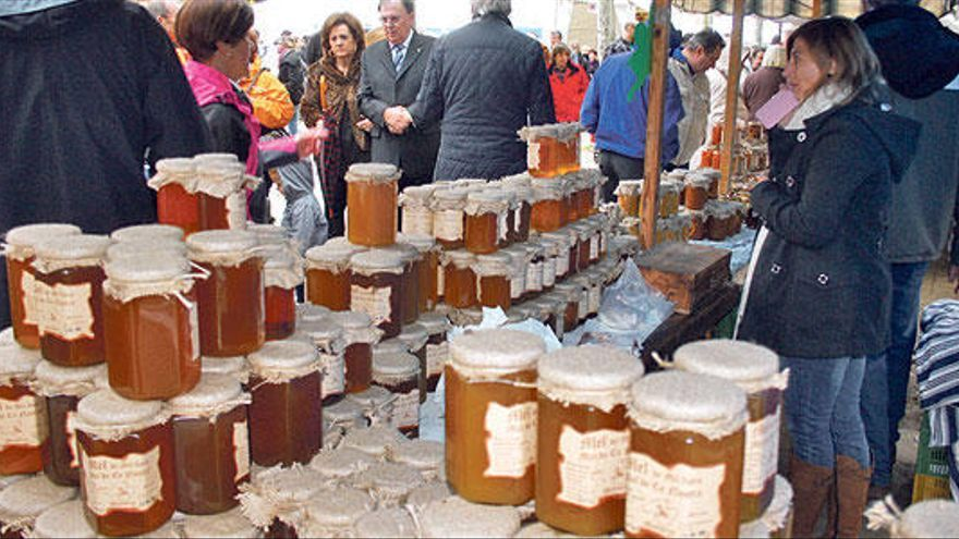 Herbst ist, wenn auf Mallorca Wein, Öl und Honig fließen