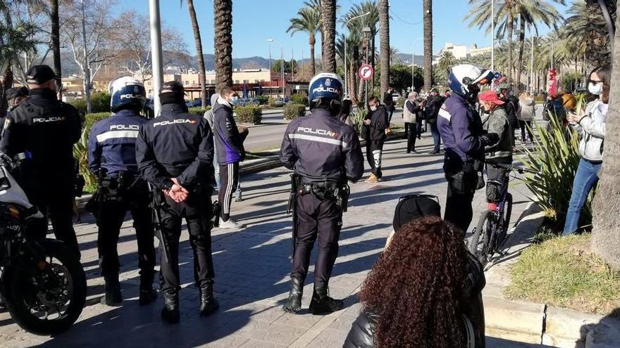 Teneriffa statt Mallorca: Demonstranten vertun sich in der Insel