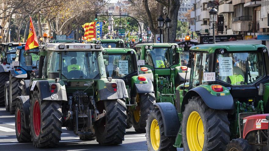 Los arroceros de la Ribera se manifestarán con tractores en València