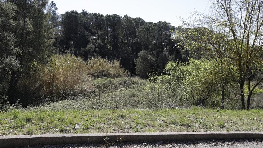 Un acord entre el govern gironí i Guanyem desencalla el Centre d'Acollida d'Animals del Gironès