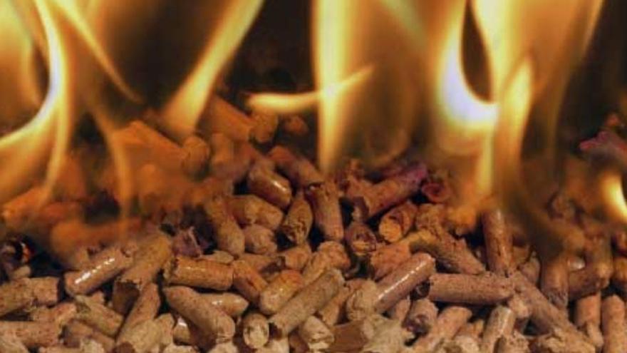 La biomassa forestal, una font d'energia renovable