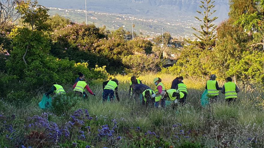 La Orotava ofrece formación específica sobre control de fauna y flora invasoras