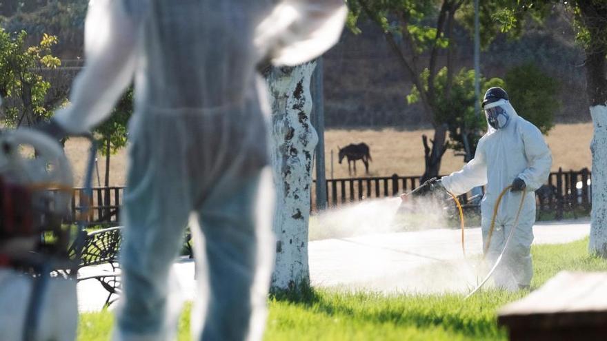 Segunda víctima mortal del virus del Nilo que afecta a 38 personas en Andalucía