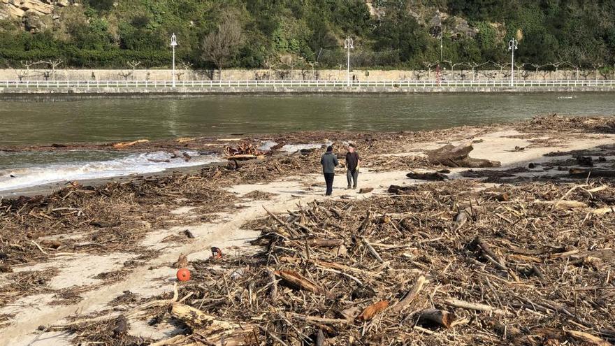 Costas autoriza la recogida de madera de la playa de Ribadesella con vehículos privados
