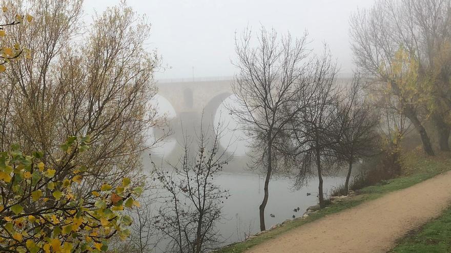 El tiempo en Zamora: alerta amarilla por niebla