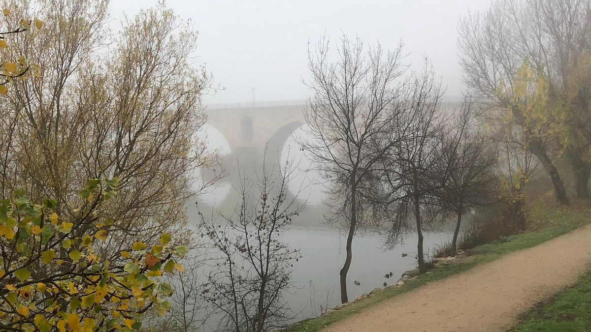 El puente de piedra de Zamora, entre la niebla, esta mañana.