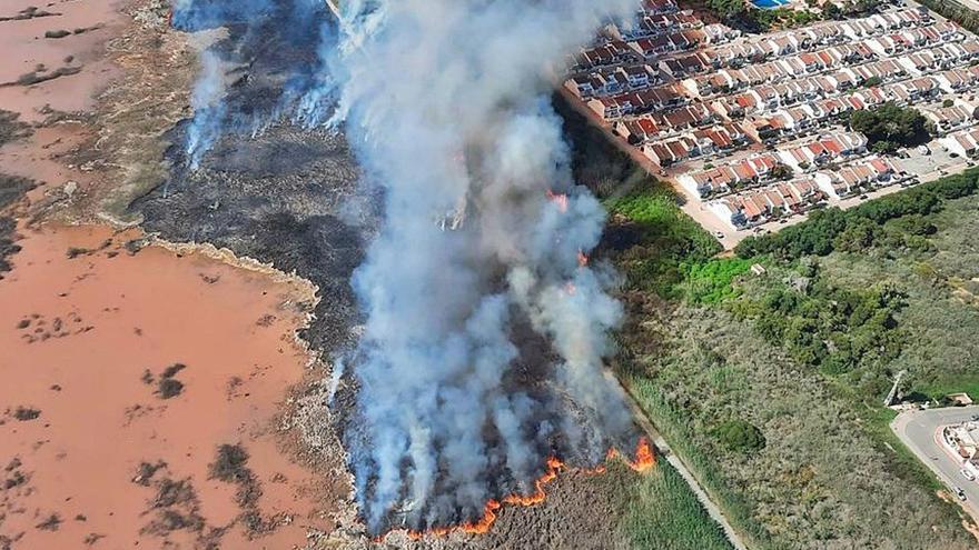 El Consell incumple en las lagunas de Torrevieja el 87% del plan contra incendios forestales que data de 2006