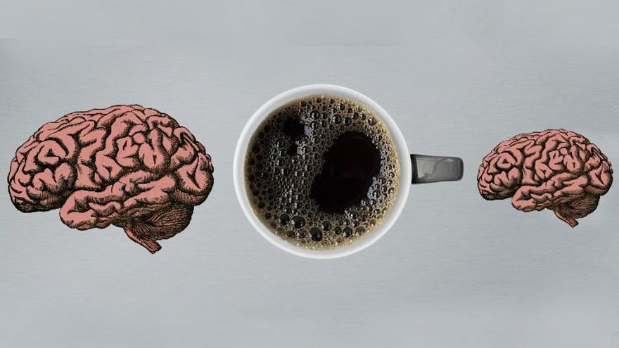 El café no te trastorna el sueño, pero sí te reduce el cerebro