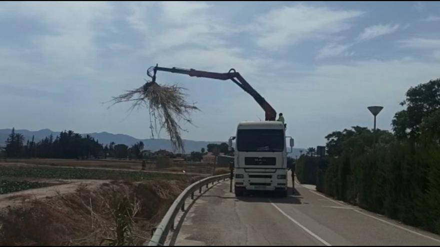 Limpian la rambla Ylorci de Lorca