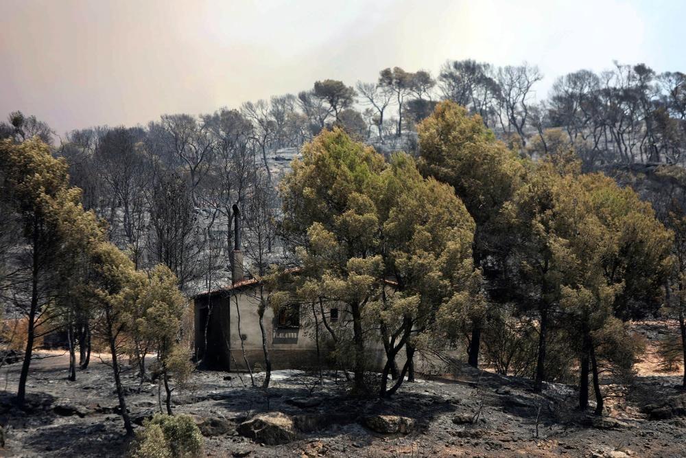 Sigue descontrolado el incendio de Tarragona ...