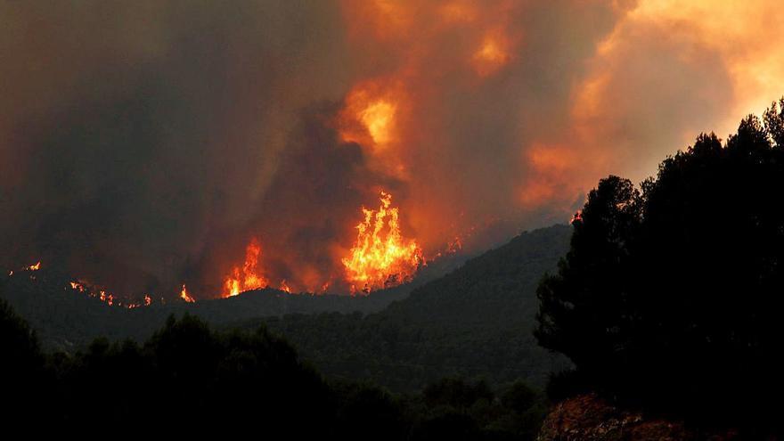 Extingit l'incendi de la Conca de Barberà i l'Anoia 26 dies després