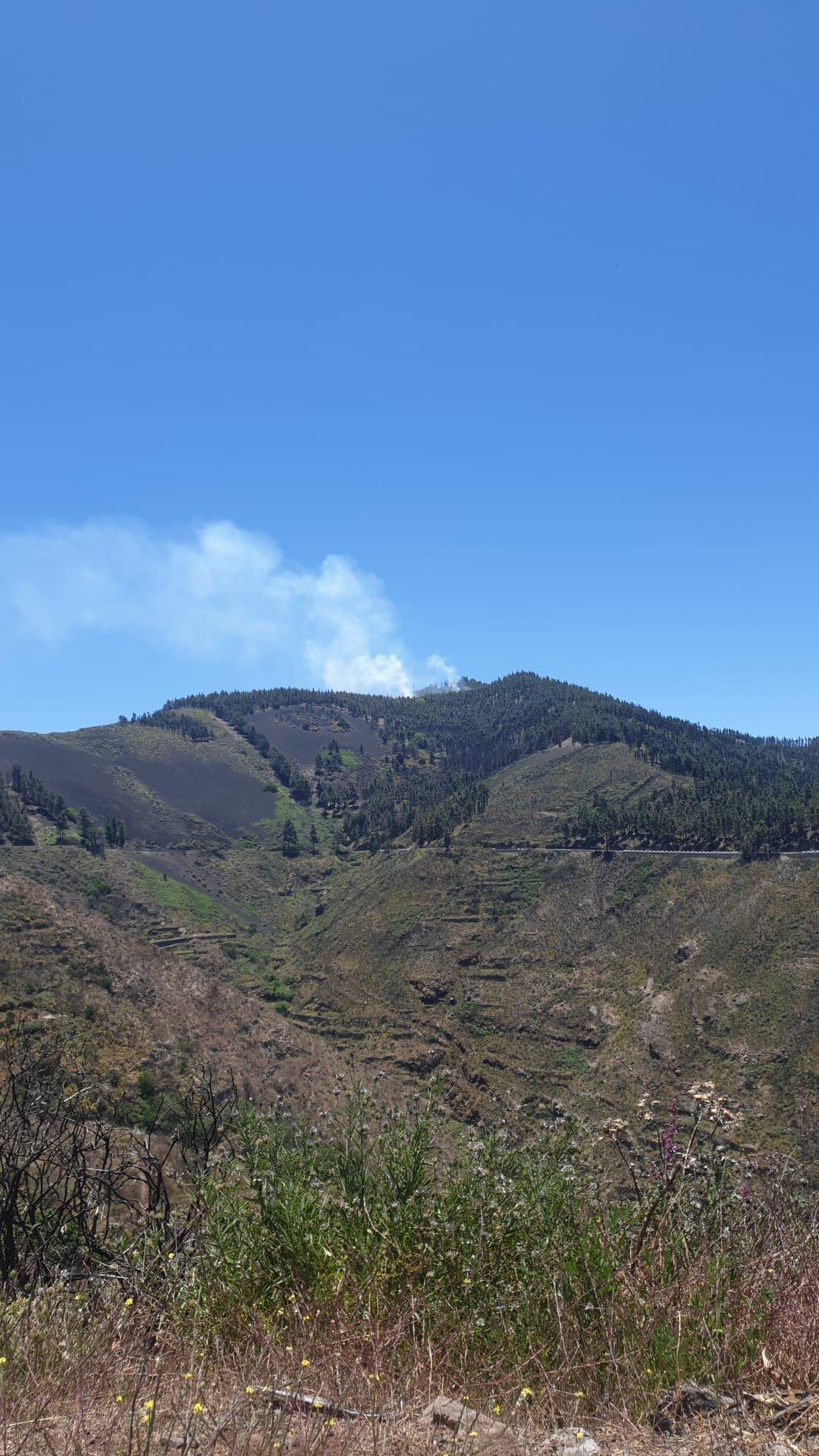 Quemas prescritas en la cumbre de Gran Canaria (30/05/21)