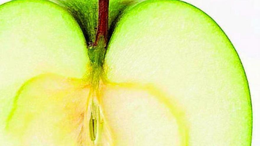 La manzana la inventó un ciervo