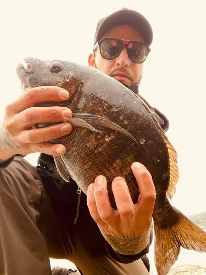 La pesca del sargo, en Laxe