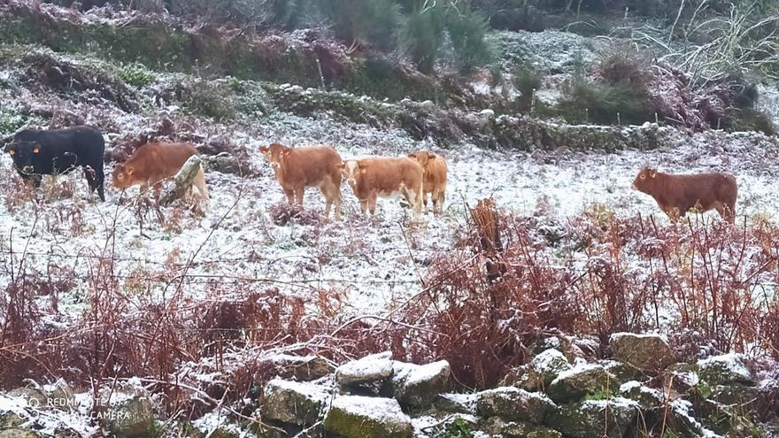 La borrasca Dora deja la primera nevada del otoño en A Lama y Ponte Caldelas