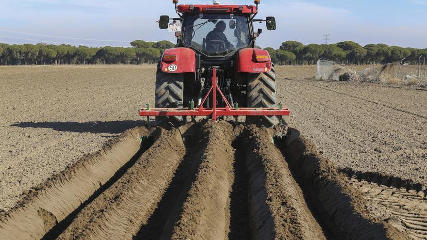 Agricultura aprobará toda las ayudas agroambientales que cumplan los requisitos