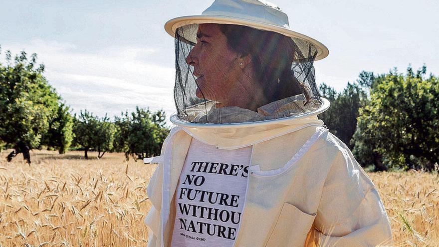 Honig von Öko-Bienen: Ein Besuch bei Herstellern auf Mallorca