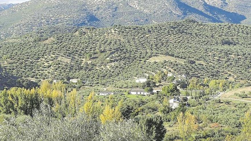 La ocupación en turismo rural durante el puente rondará el 20%