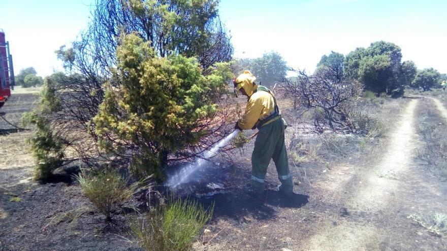 Dos incendios en San Román del Valle y Villavendimio arrasan más de siete hectáreas de terreno