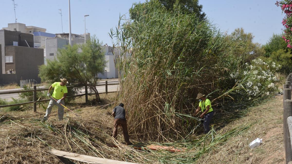 Els treballadors eliminen tota la vegetació que creix als margenes durant tot l'any i dentre de les séquies.