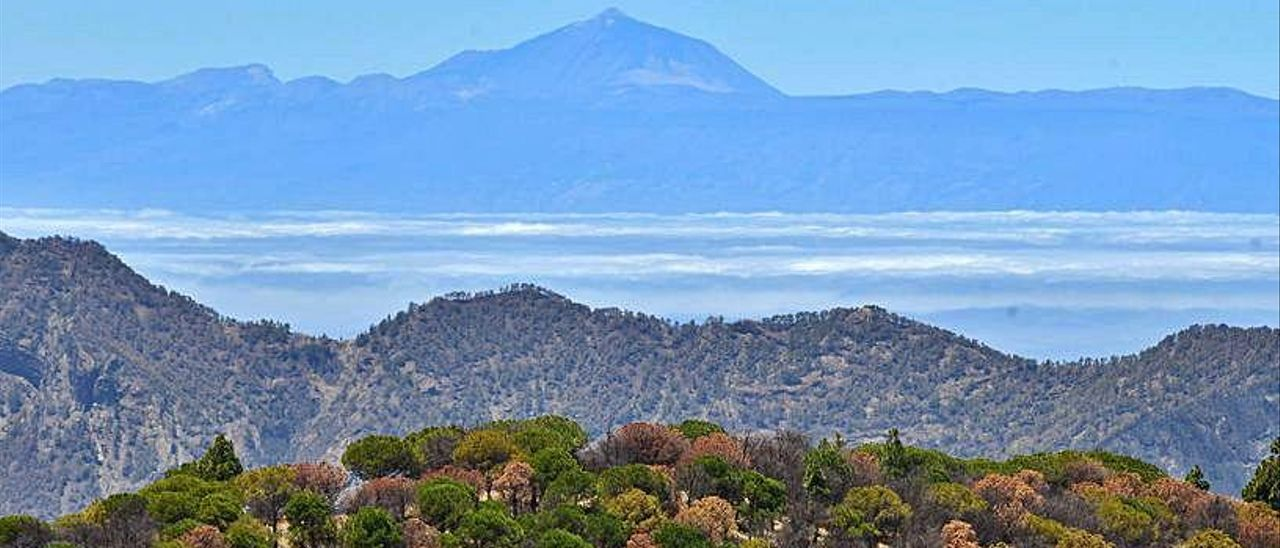 Vistas del Teide desde la Degollada de Becerra.