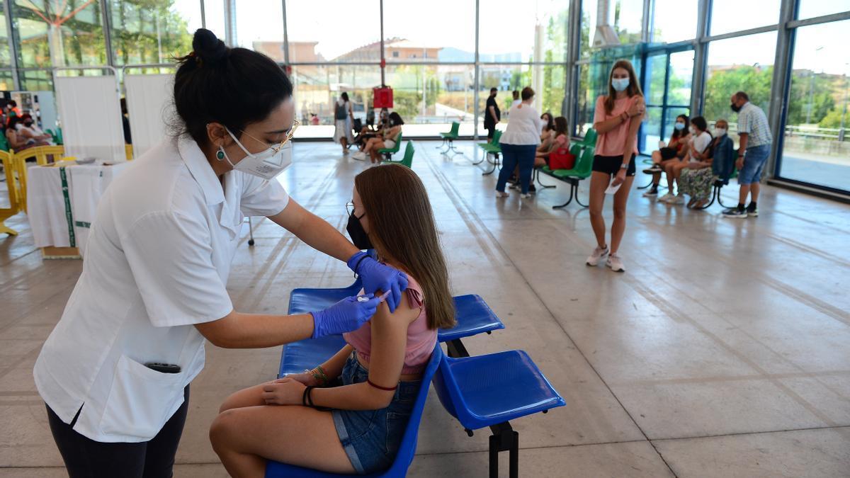Últimas vacunaciones masivas en El Berrocal.